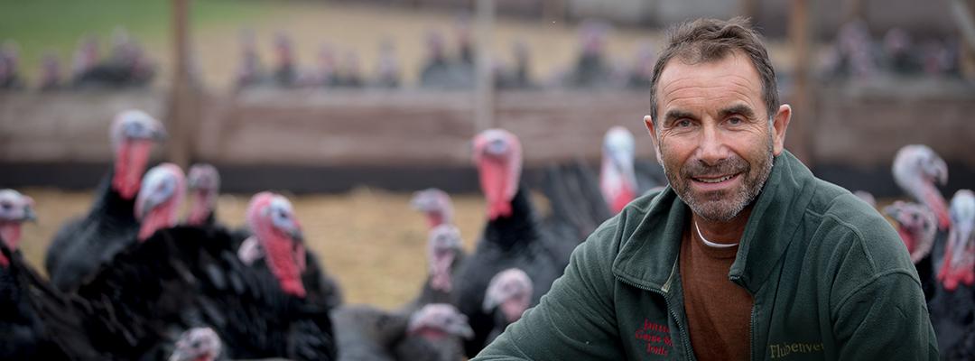 Anthony & Turkeys